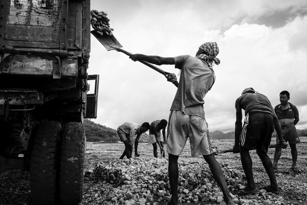 Bezrobotni pracownicy zamknętych ogrodów herbacianych, załadowują tira kamieniami.