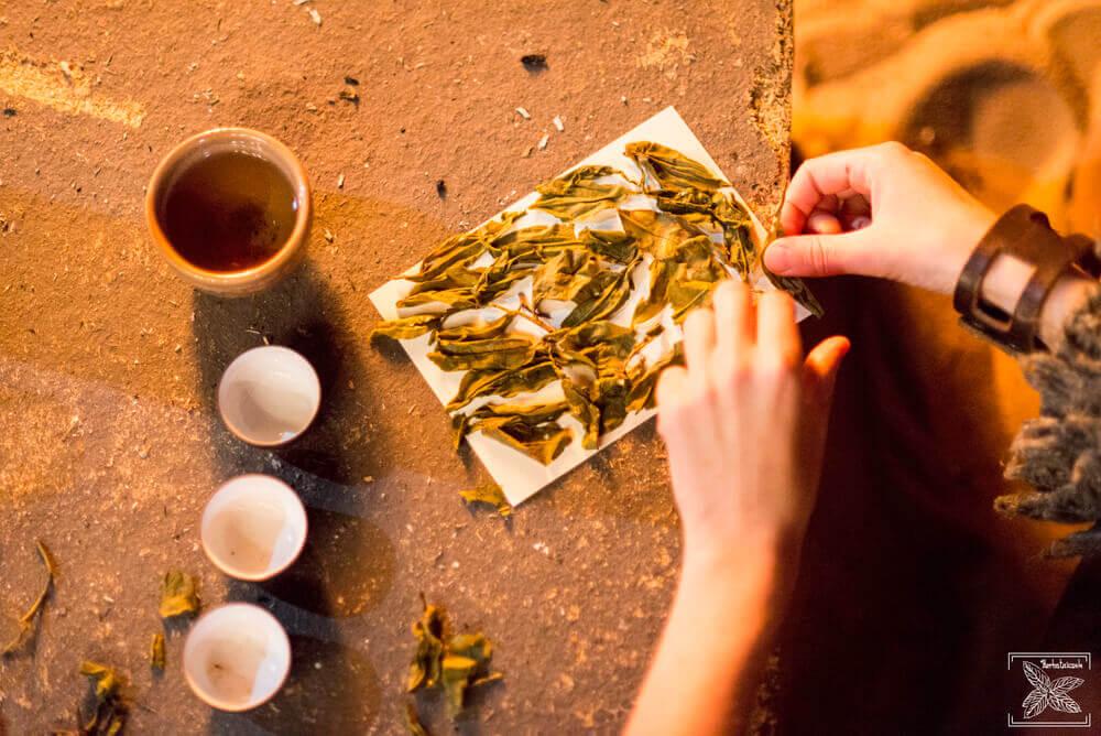 Suszenie liści herbaty przy ogniu