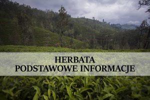 plantacja herbaty na sri lance z napisem podstawowe informacje o herbacie