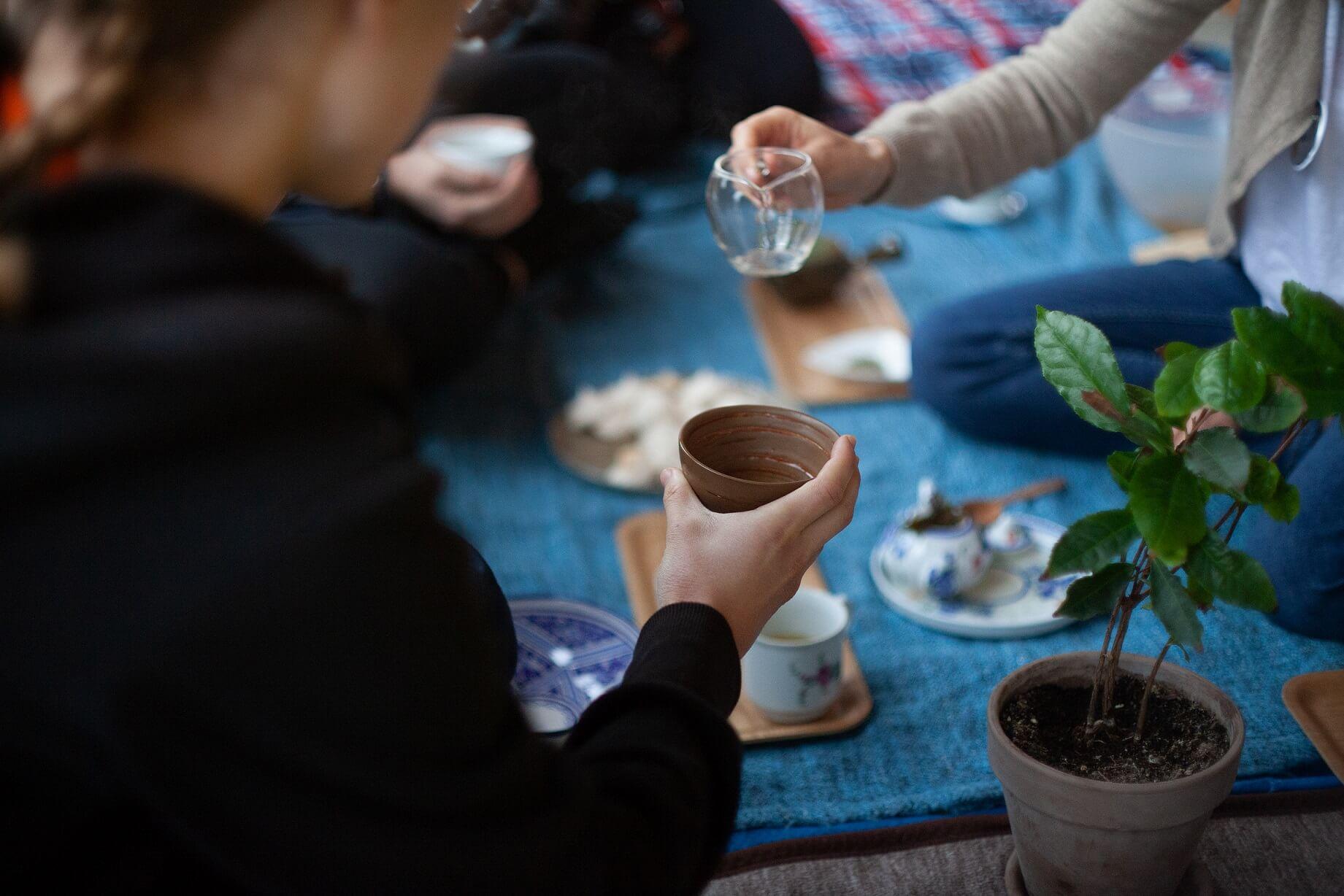 Degustacja herbaty podczas warsztatów